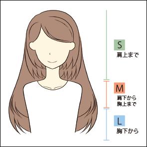 髪の長さについての図